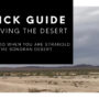 Quick Guide to Survive the Yuma Desert